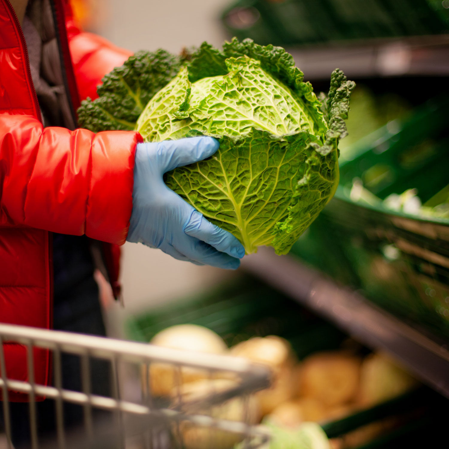 wearing gloves at grocery store holding cabbage coronavirus