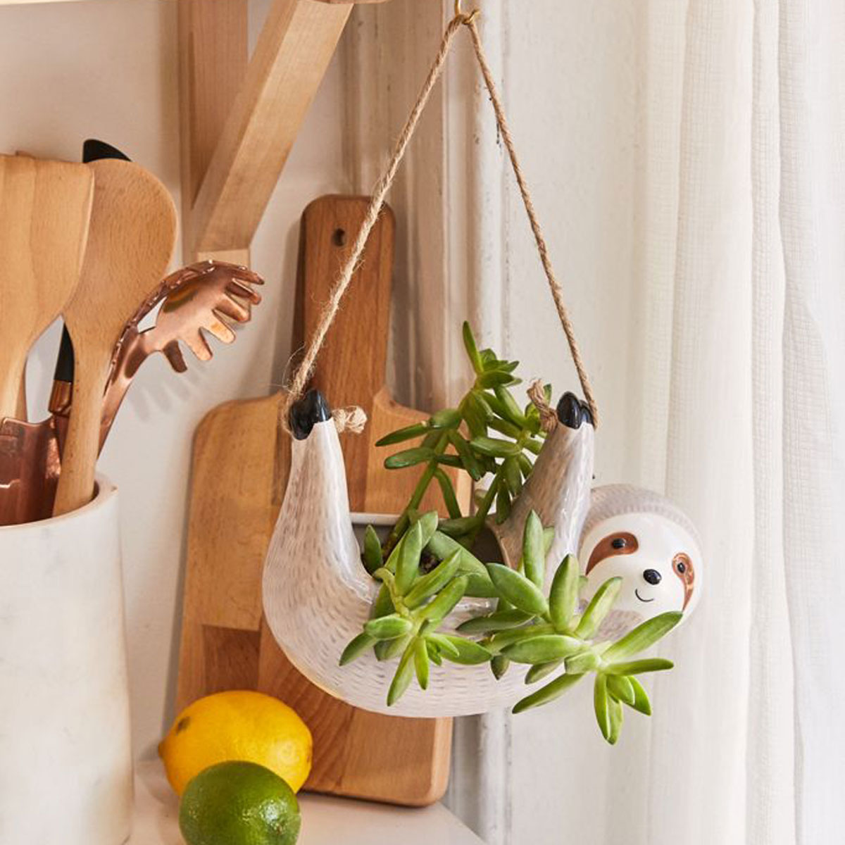 urban outfitters hanging sloth planter