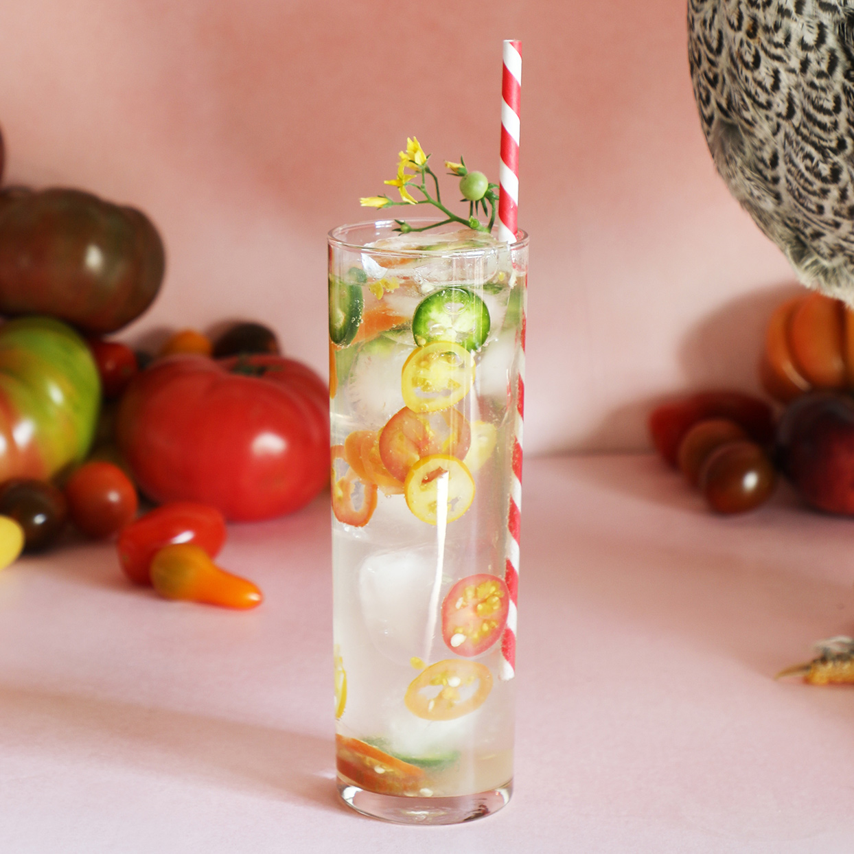 Spicy Tomato Vodka Soda