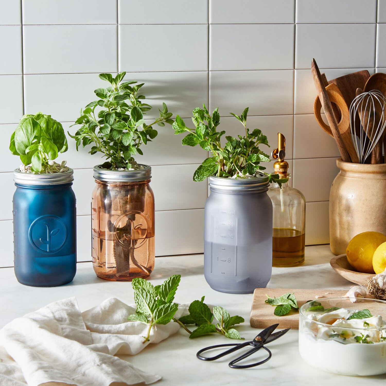 Food52 Garden Jar Herb Kit