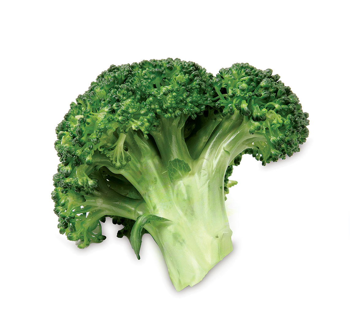 a green broccoli floret on a white background