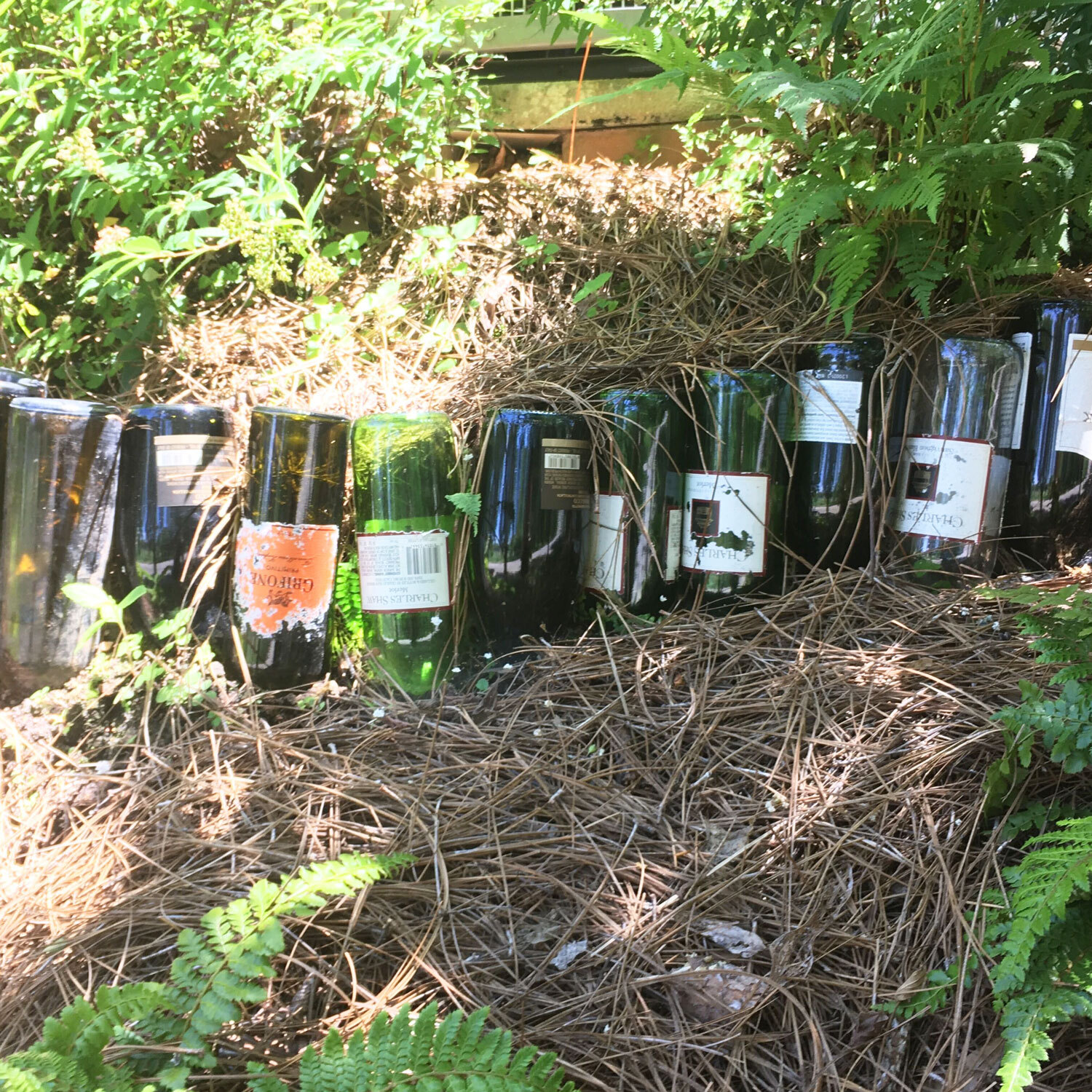 Wine bottles as garden border