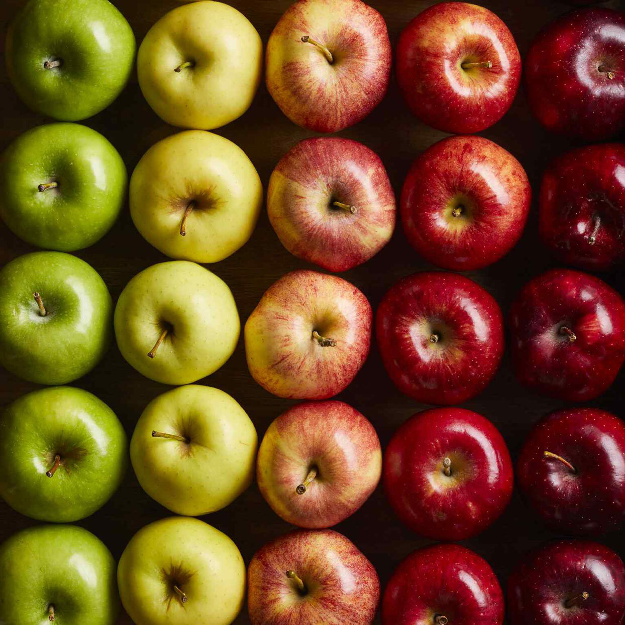 types of apples lined up by color and shade