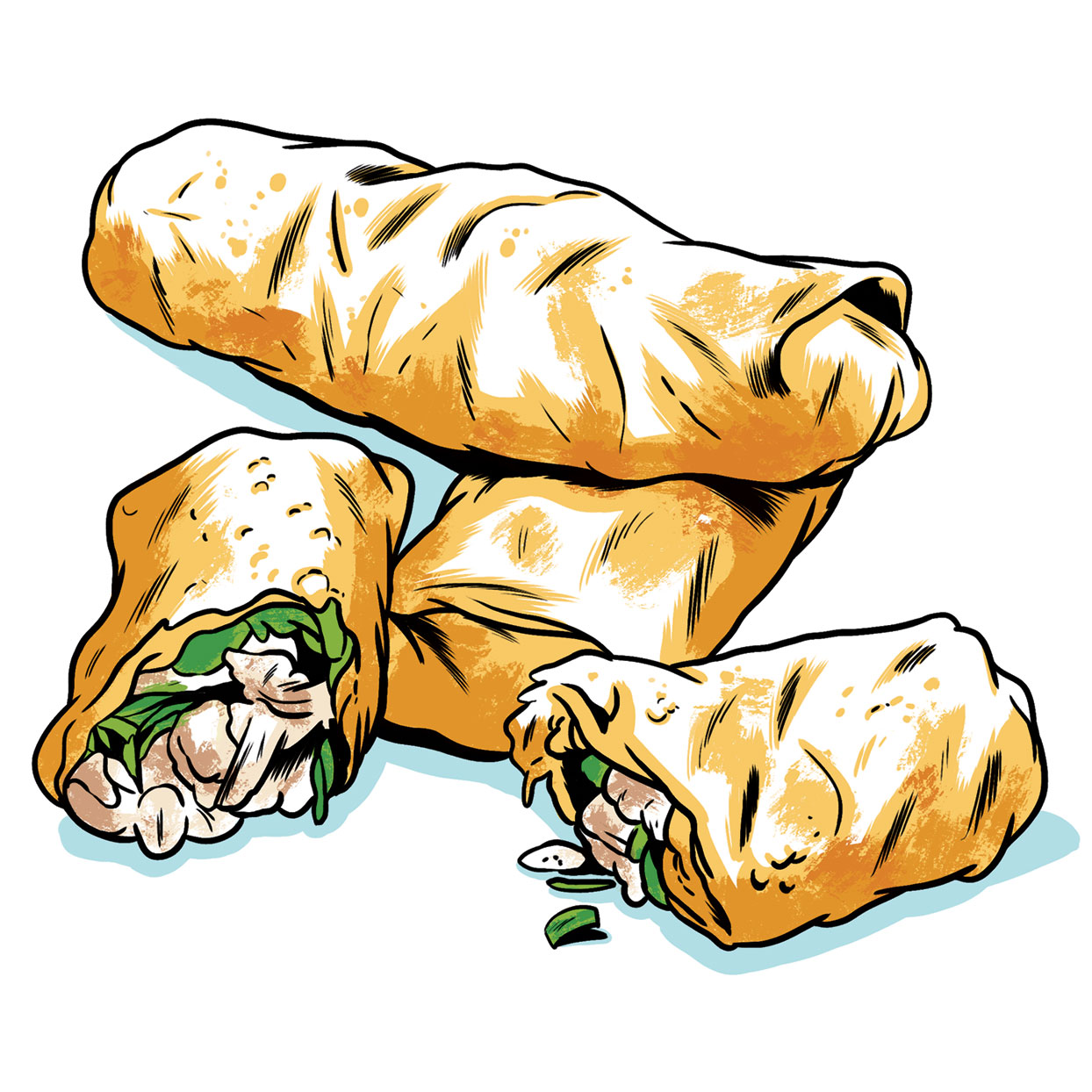 Turkey Egg Rolls illustration
