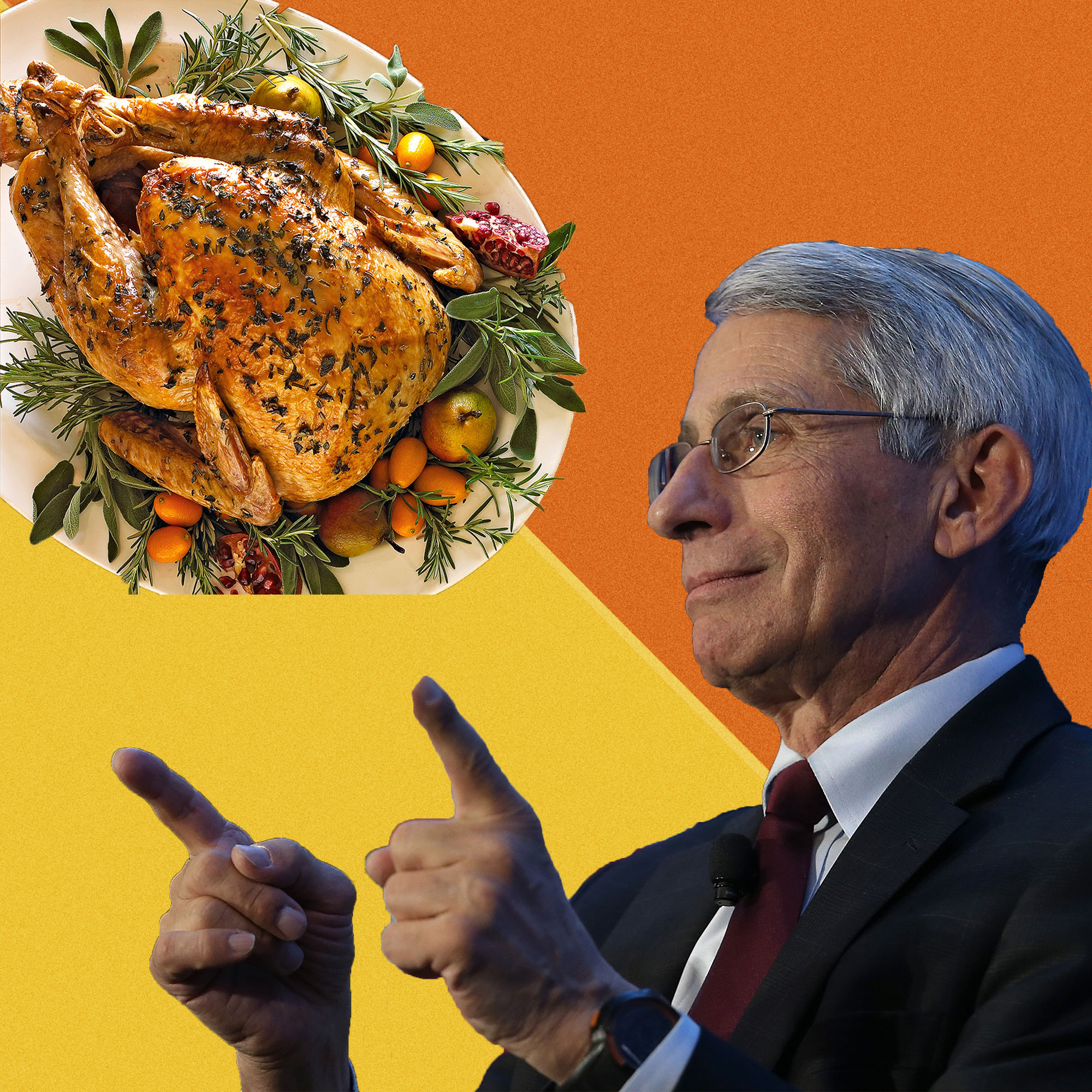 dr fauci thanksgiving