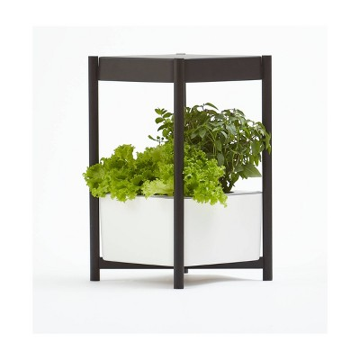 https://www.eatingwell.com/article/7884325/the-best-herb-garden-kits-for-every-type-of-gardener-even-if-you-kill-every-houseplant-you-ve-ever-met/guest_3b6a922d-fc87-4146-9a41-63f8bba8d1fa/