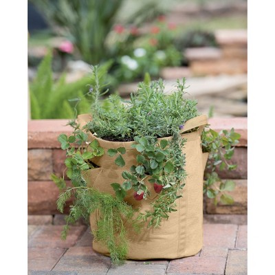 https://www.eatingwell.com/article/7884325/the-best-herb-garden-kits-for-every-type-of-gardener-even-if-you-kill-every-houseplant-you-ve-ever-met/guest_e4bb4af9-5562-4a24-a205-9166d16e7cd4/