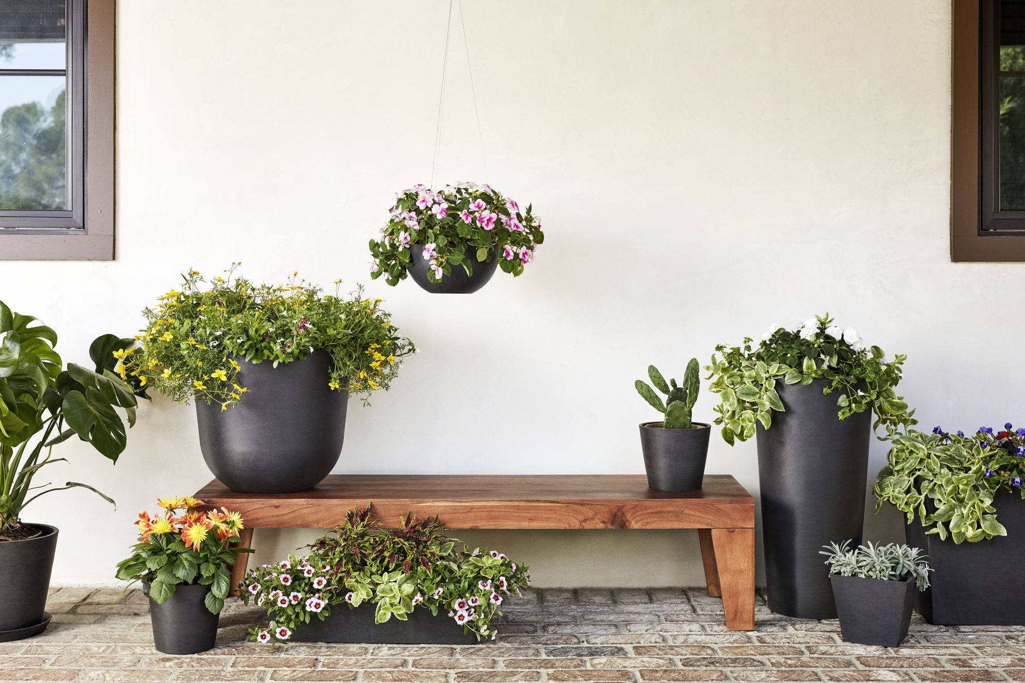 pots of flowers on a bench