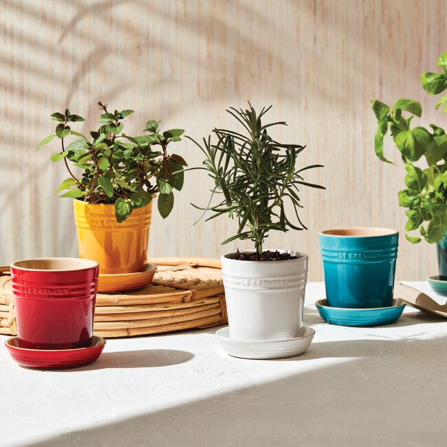 le creuset herb planter with tray
