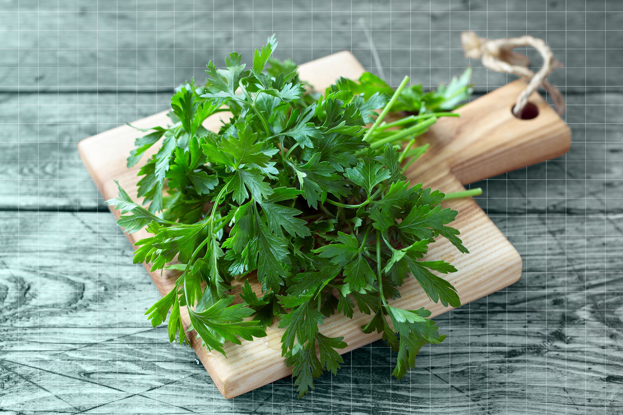 Bunch of fresh organic parsley on a cutting board on a wooden table