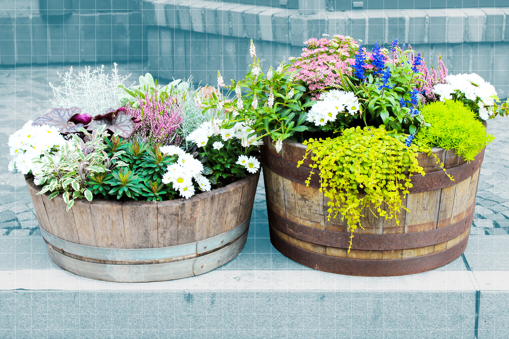 Two planters full of flowers