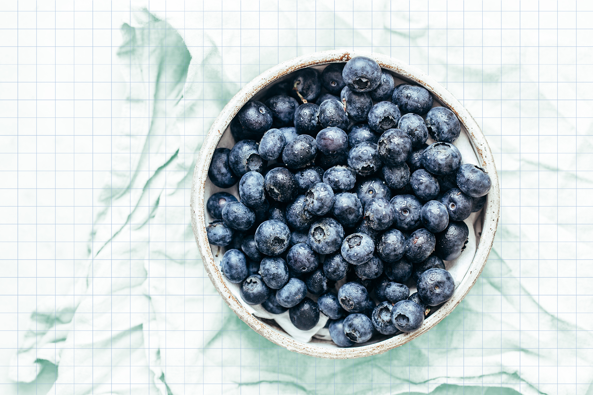 Blueberry bowl on white background with copy space in rustic style