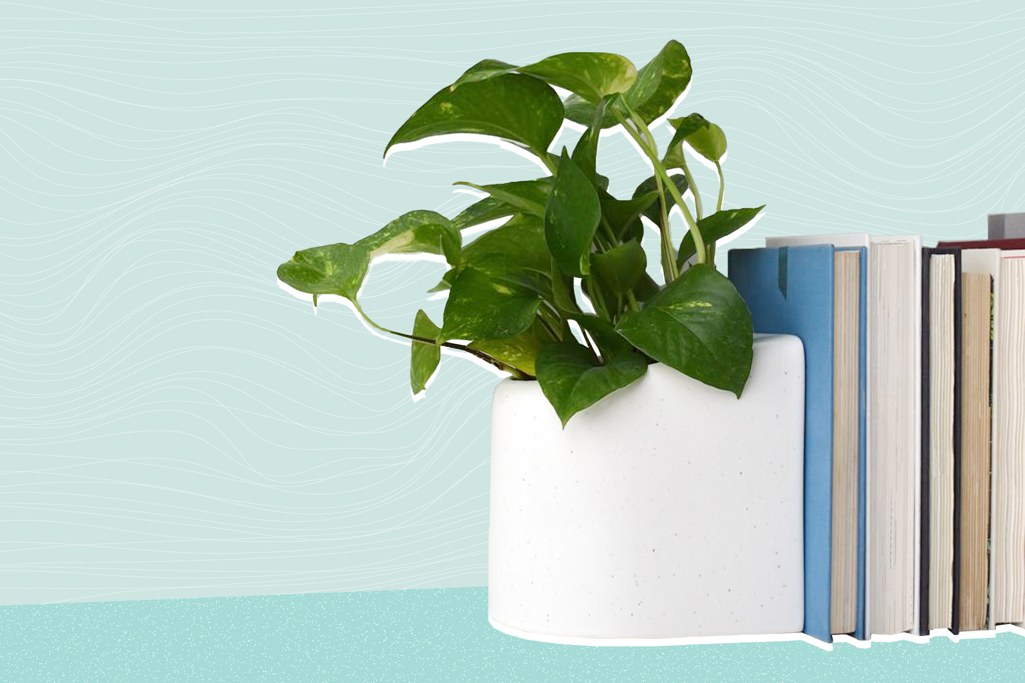 STAK Editor Planter Bookend, Gloss Speckle