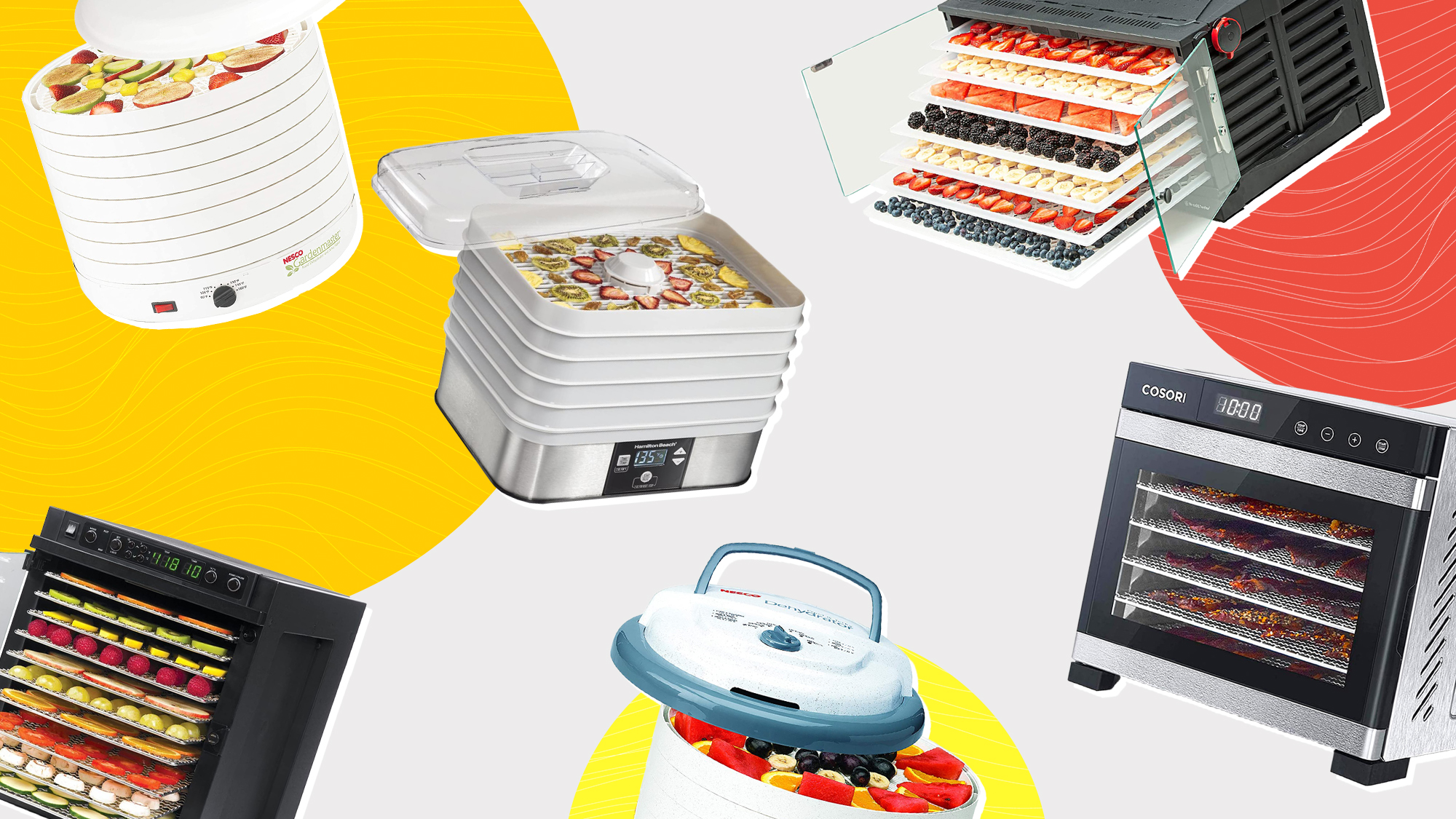 A selection of 6 Dehydrators on a designed background