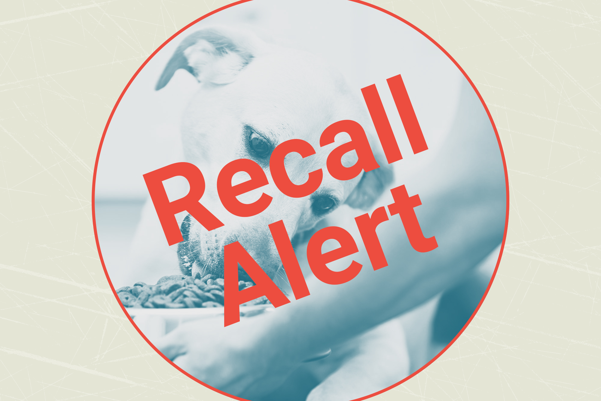 woman handing dog a bowl of dog food with a recall button