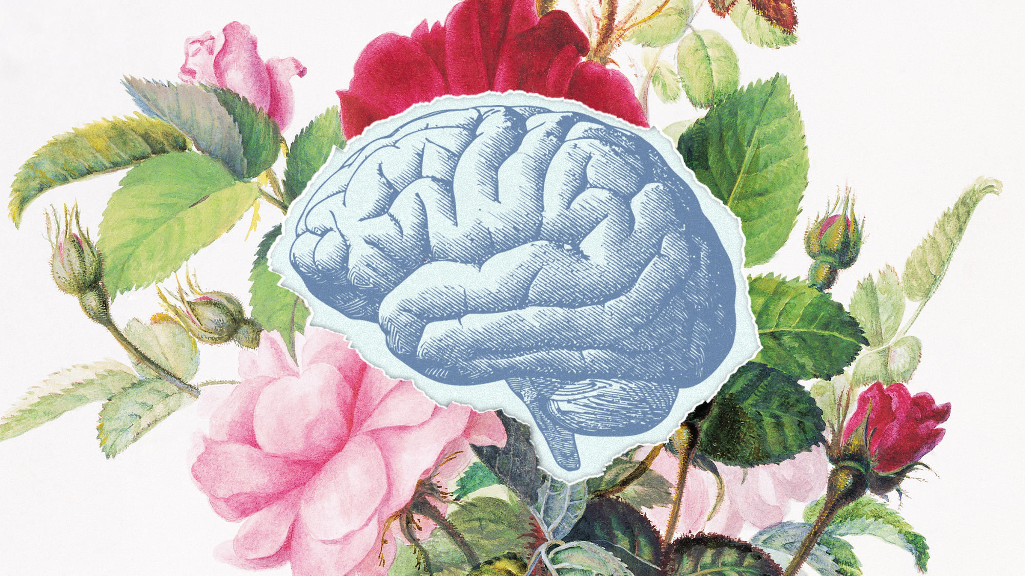 an illustration of flowers with a cutout in the center revealing a brain
