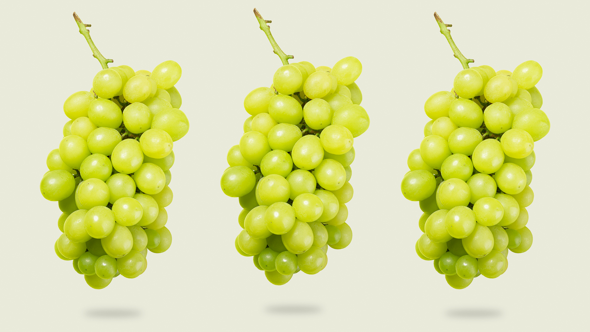 3 bunches of grapes floating on a designed background