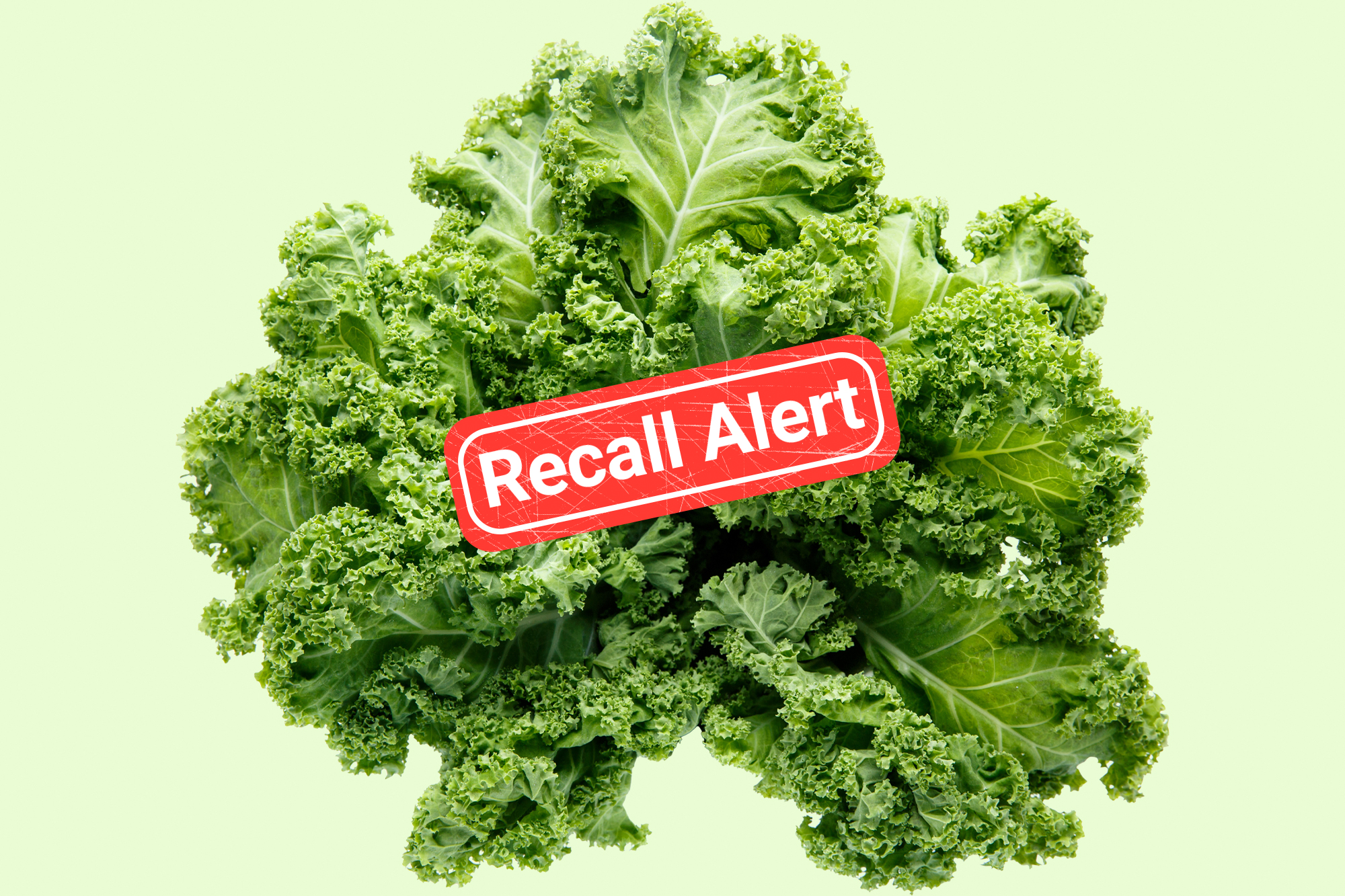 A photo of kale on a green background with a red recall alert over it