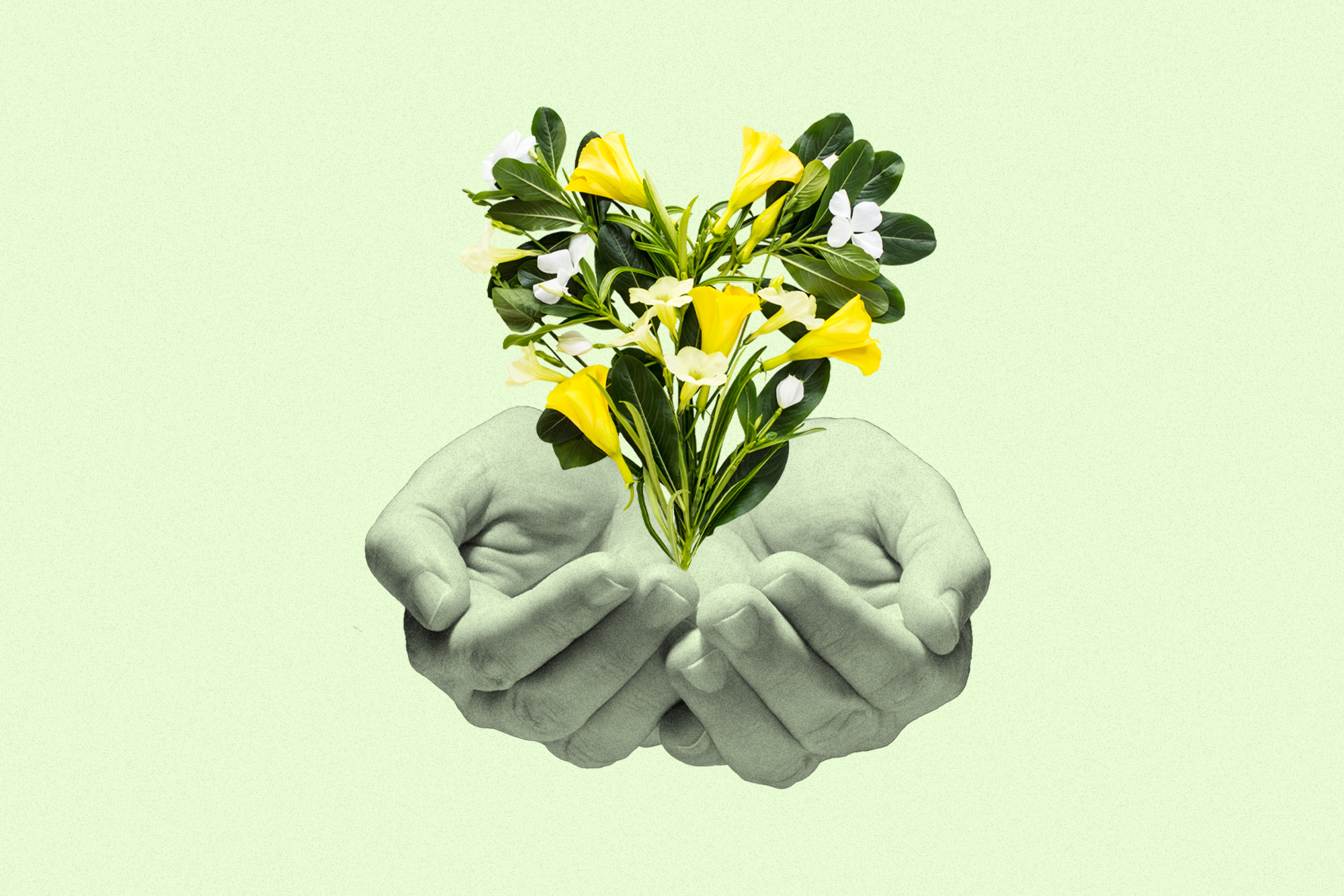 two cupped hands under a heart made of flowers on a green background
