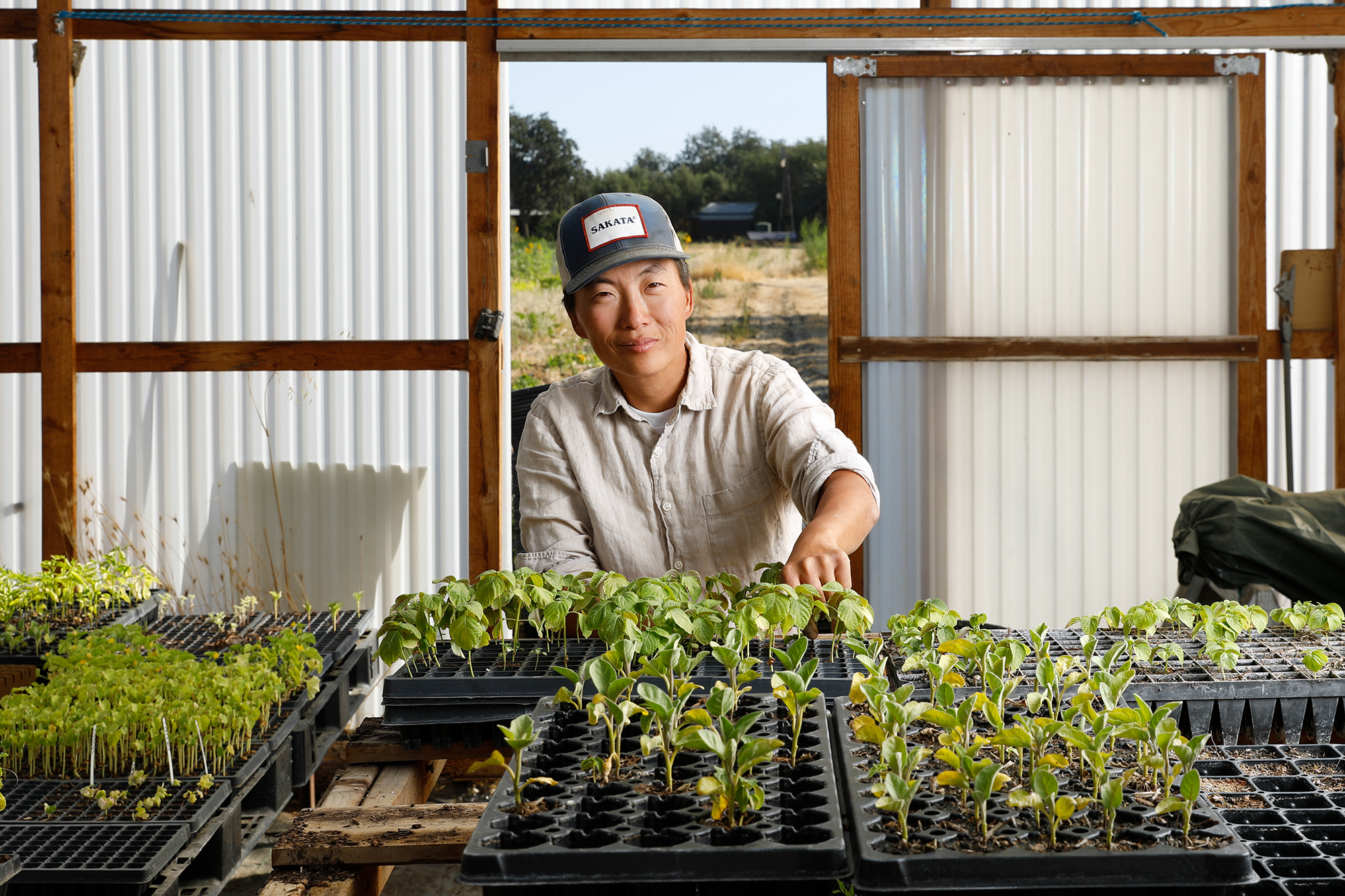 A person in a green house with a bunch of plant starters