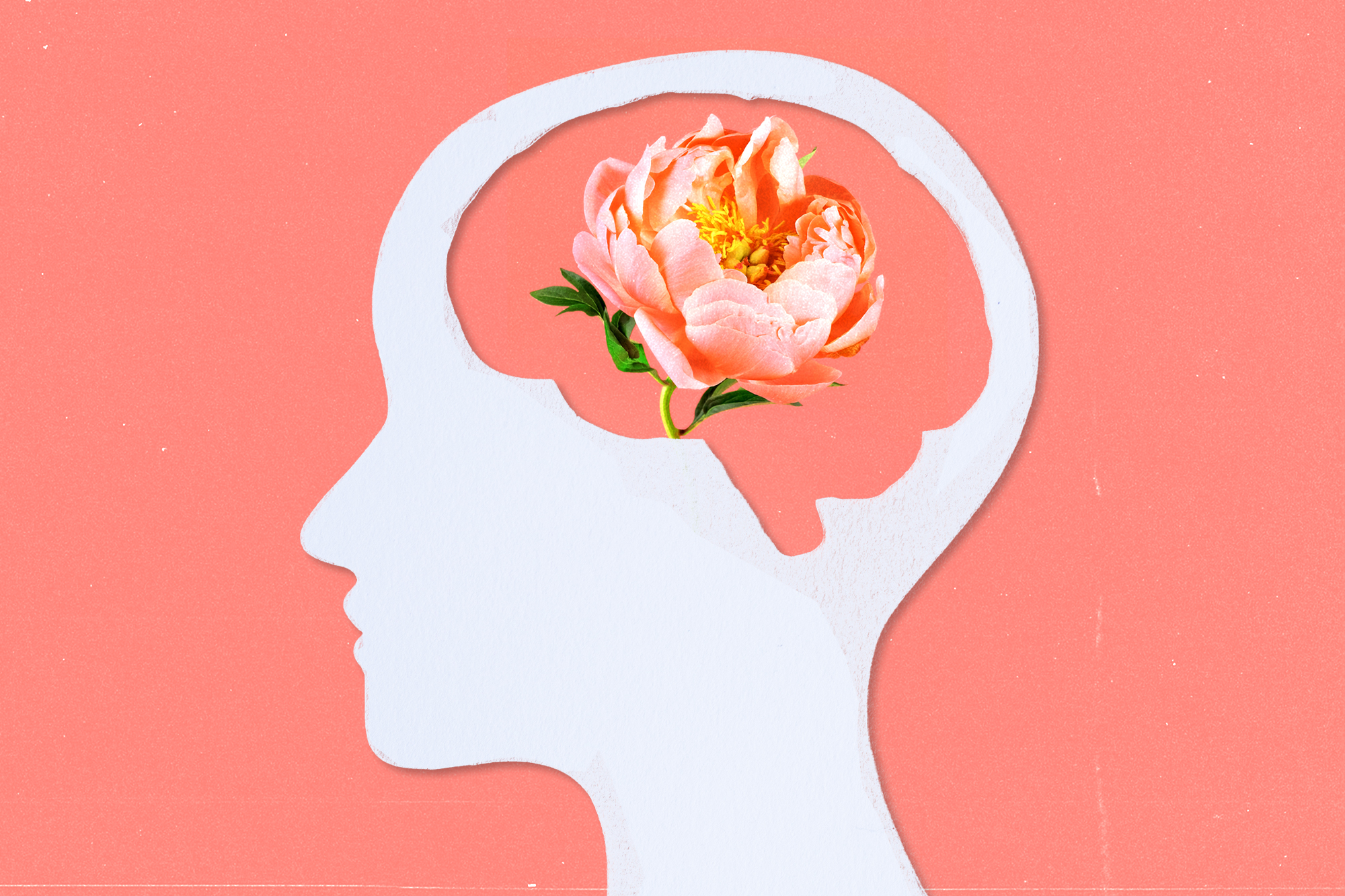The cutout of a human head with a brain cutout exposing a flower on a pink background