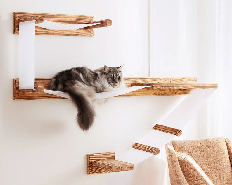 cat wall shelving