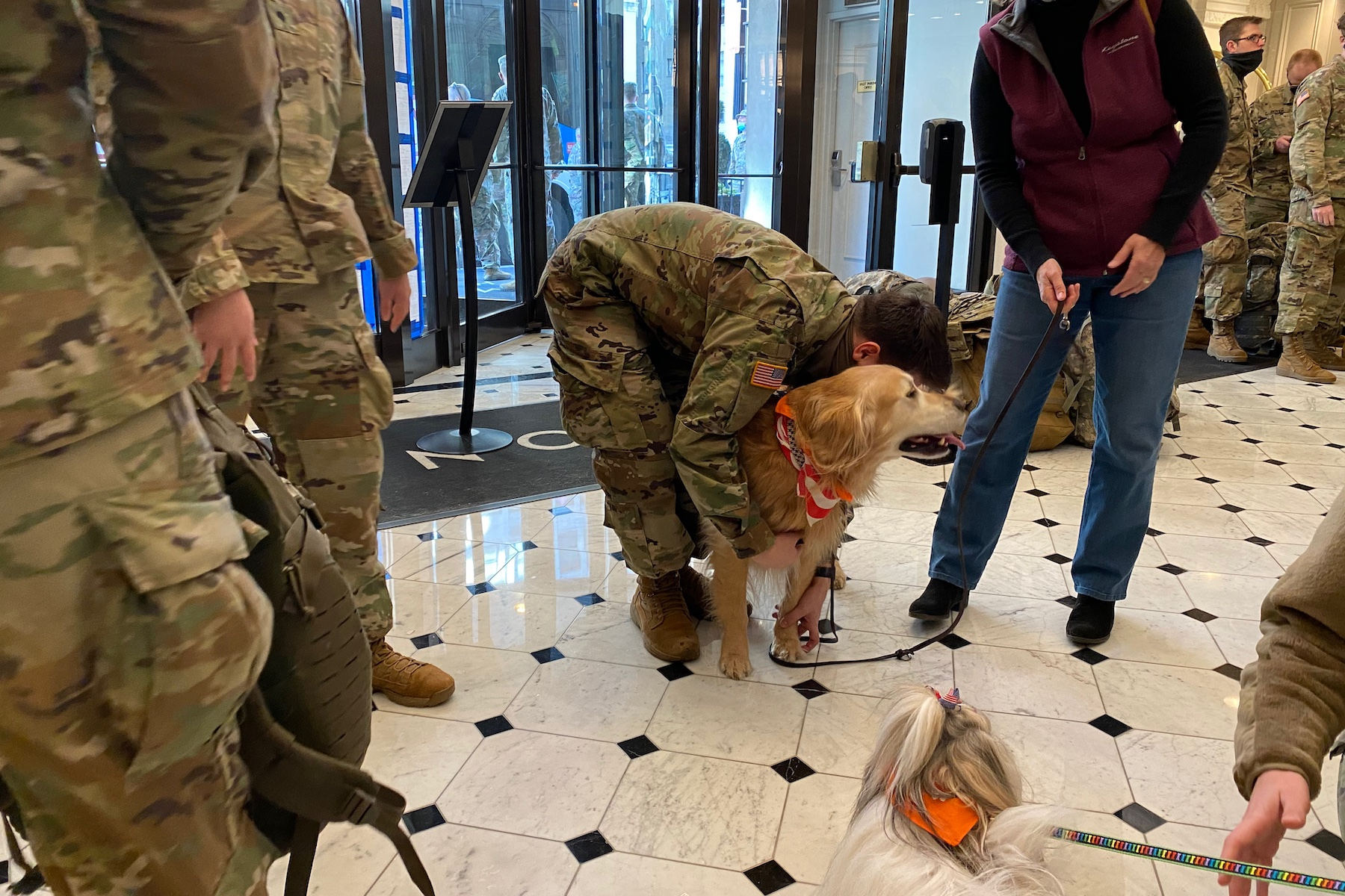 therapy dogs meet national guard at hamilton hotel
