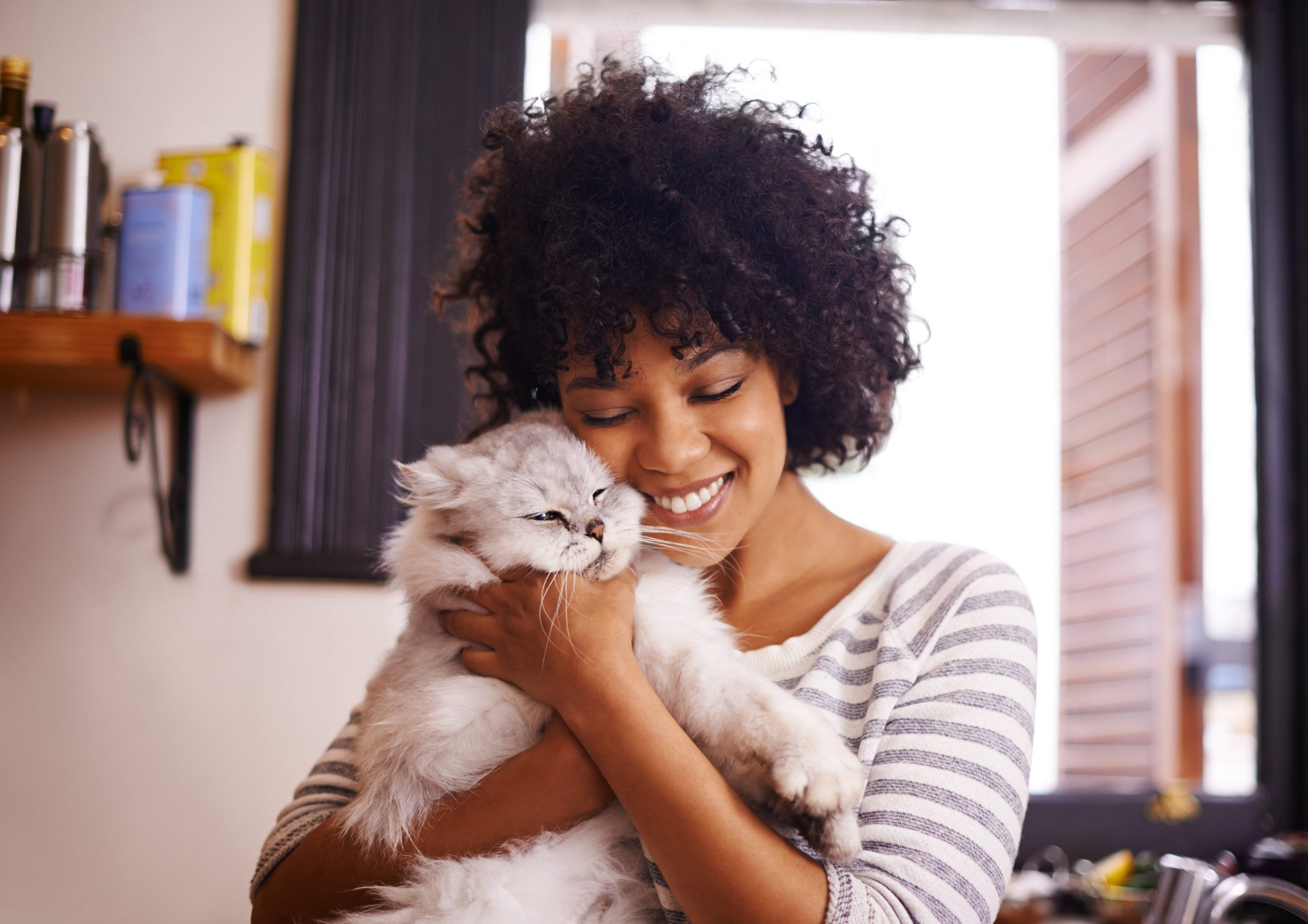 Woman holding a fluffy cat