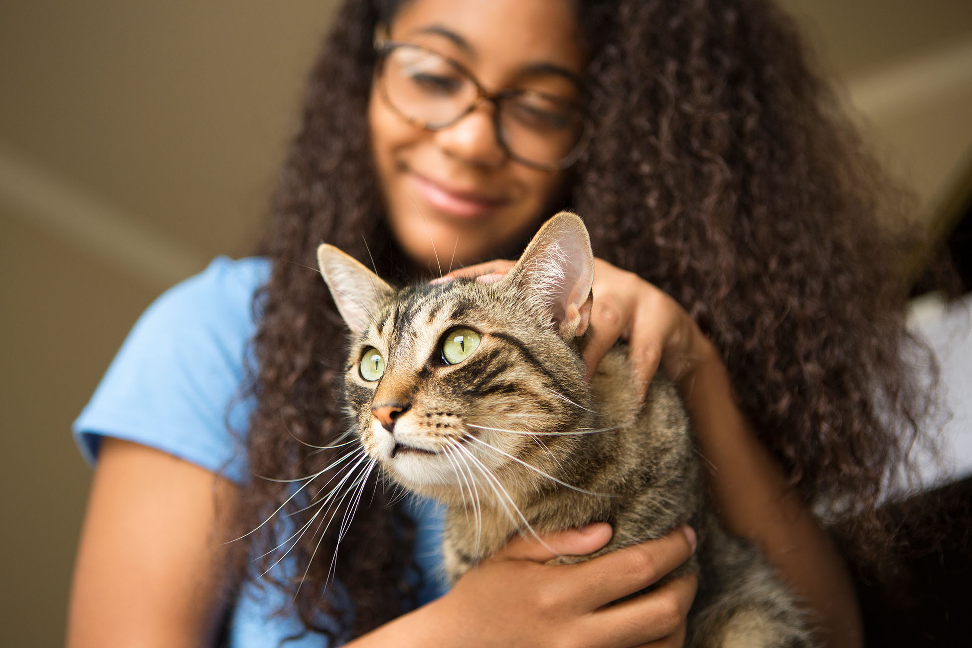 young girl petting tabby cat