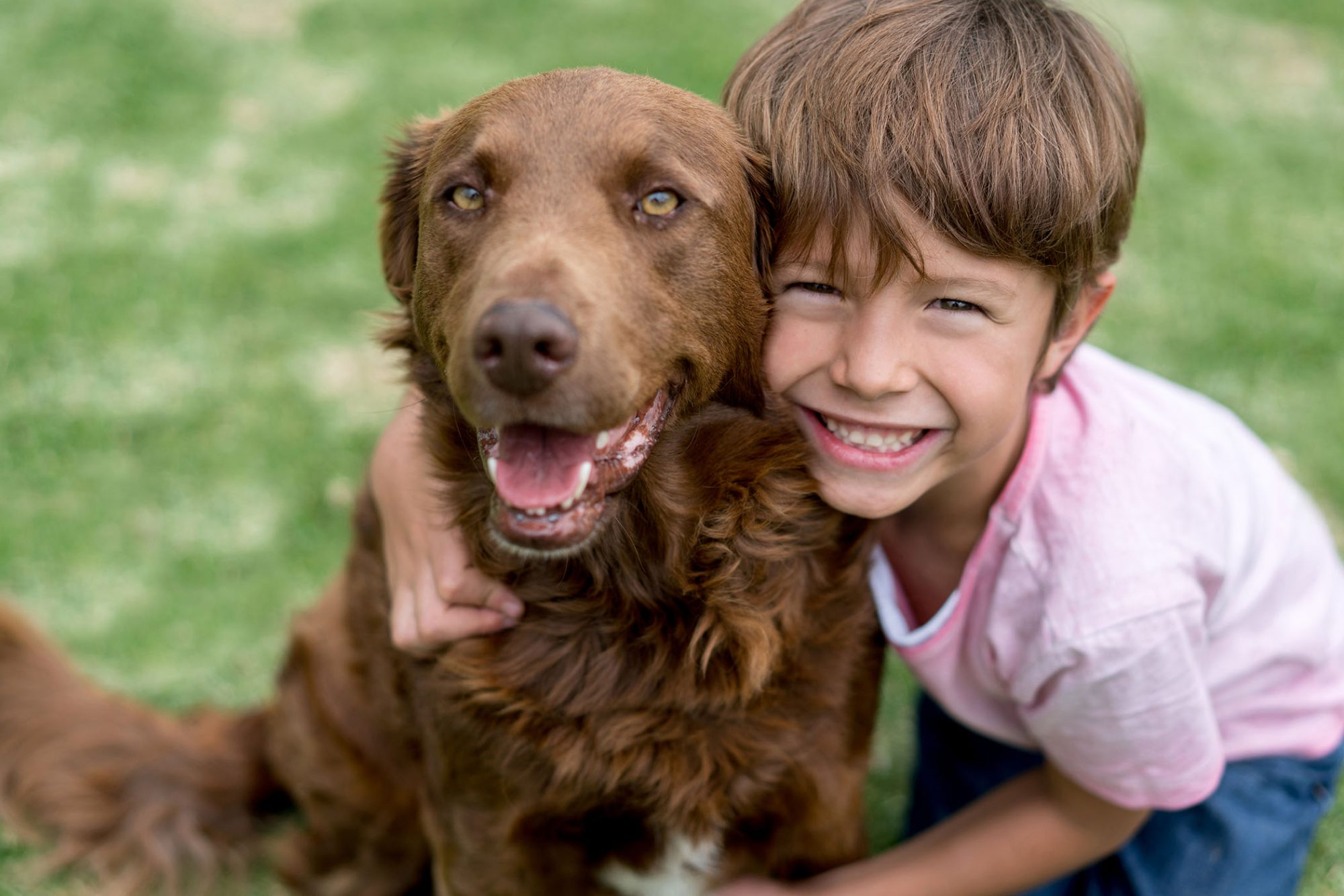 young boy and adult dog