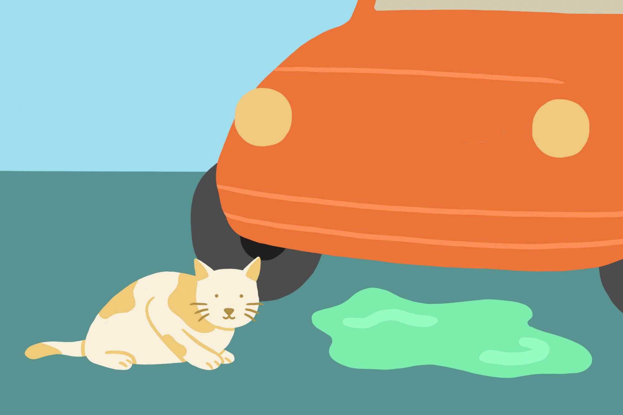 illustration of cat near antifreeze spill under car