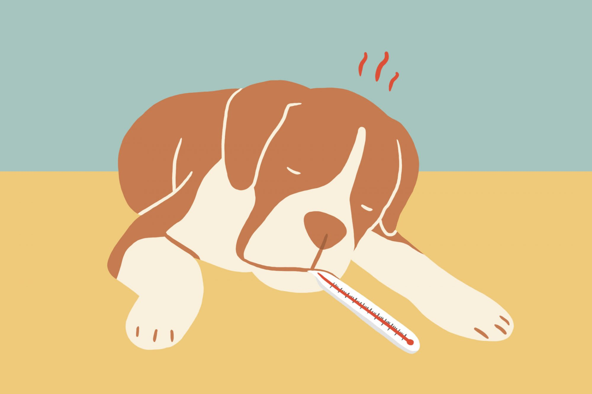 illustration of dog with a thermometer