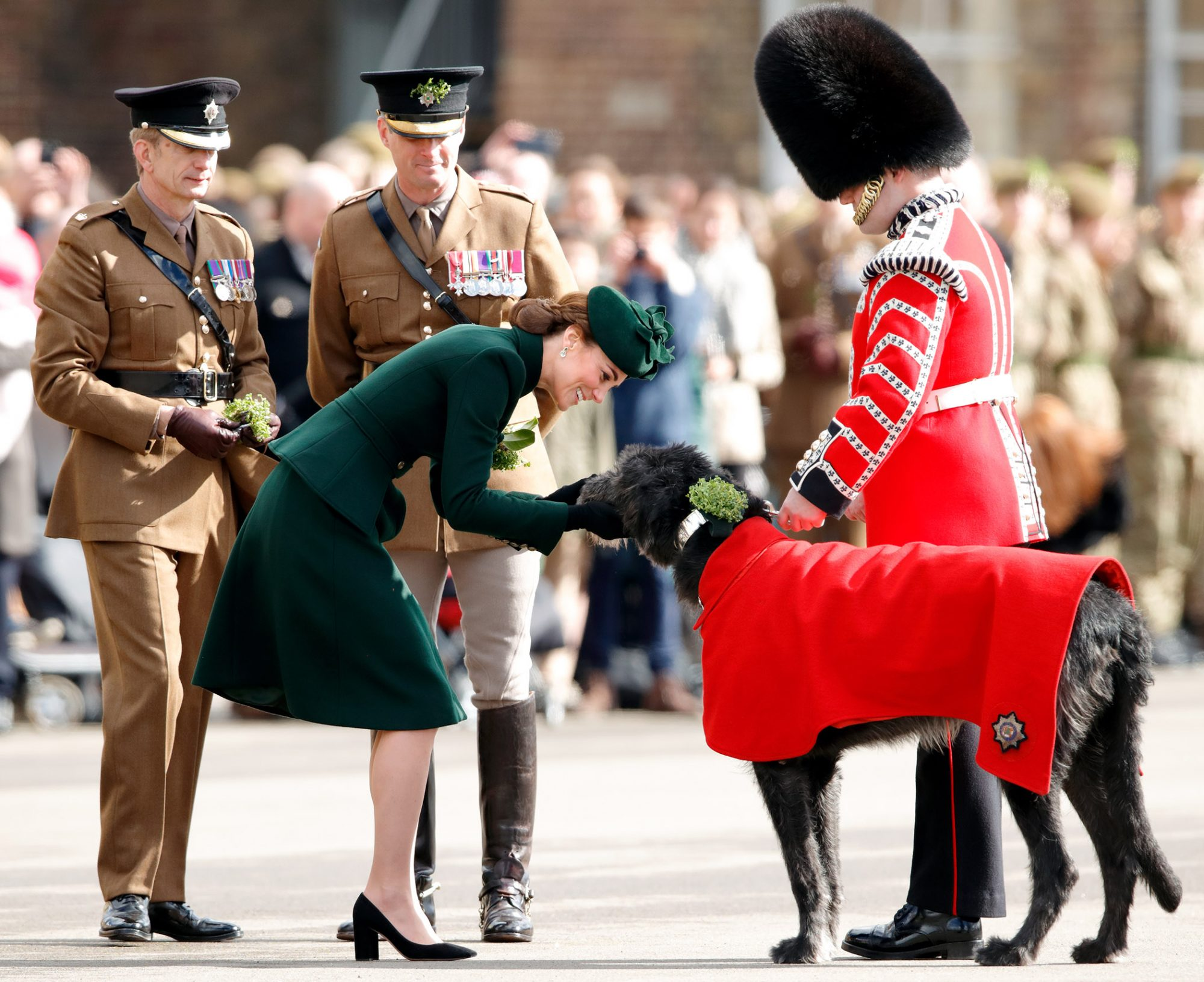 duchess of cambridge with irish wolfhound irish guard
