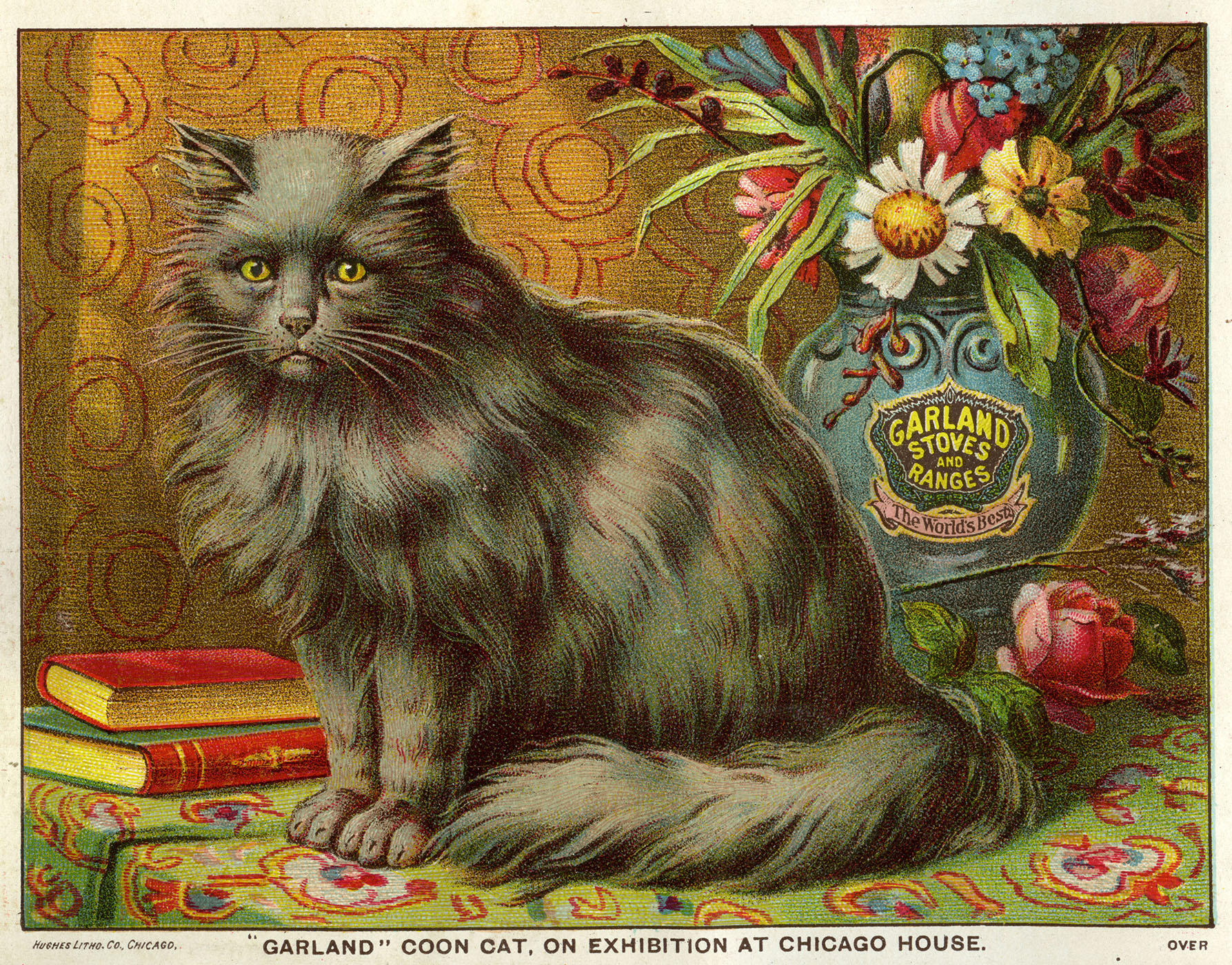 19th century advertisement featuring Maine coon