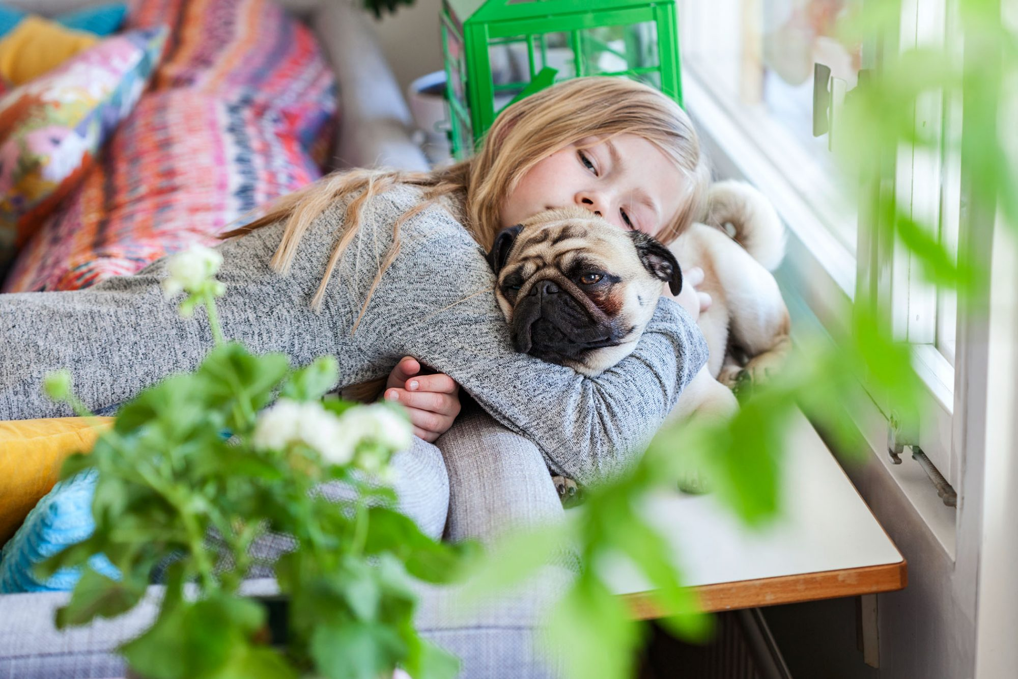pug snuggling with girl