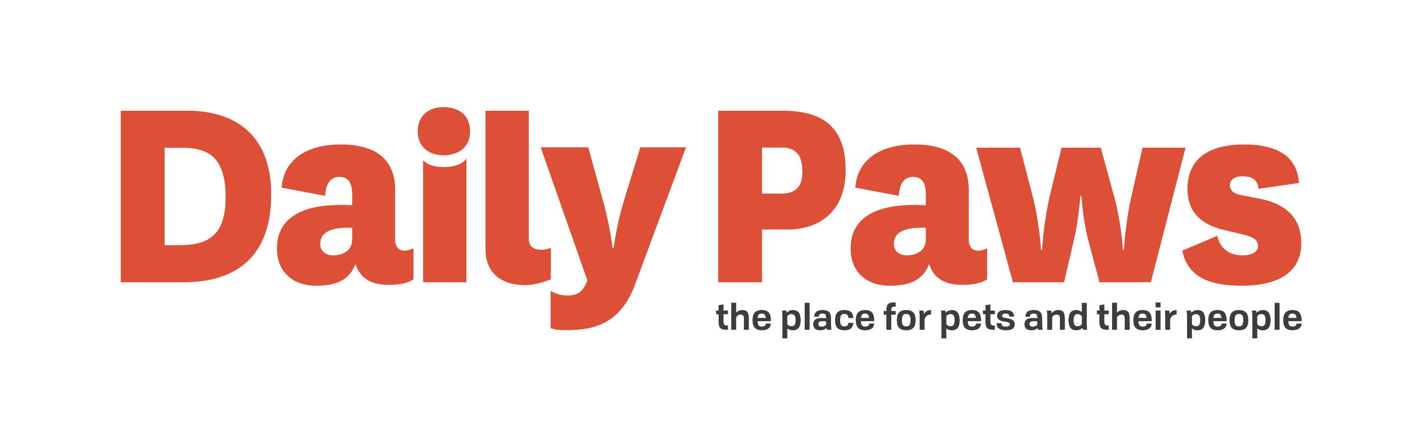 Daily Paws logo and tagline
