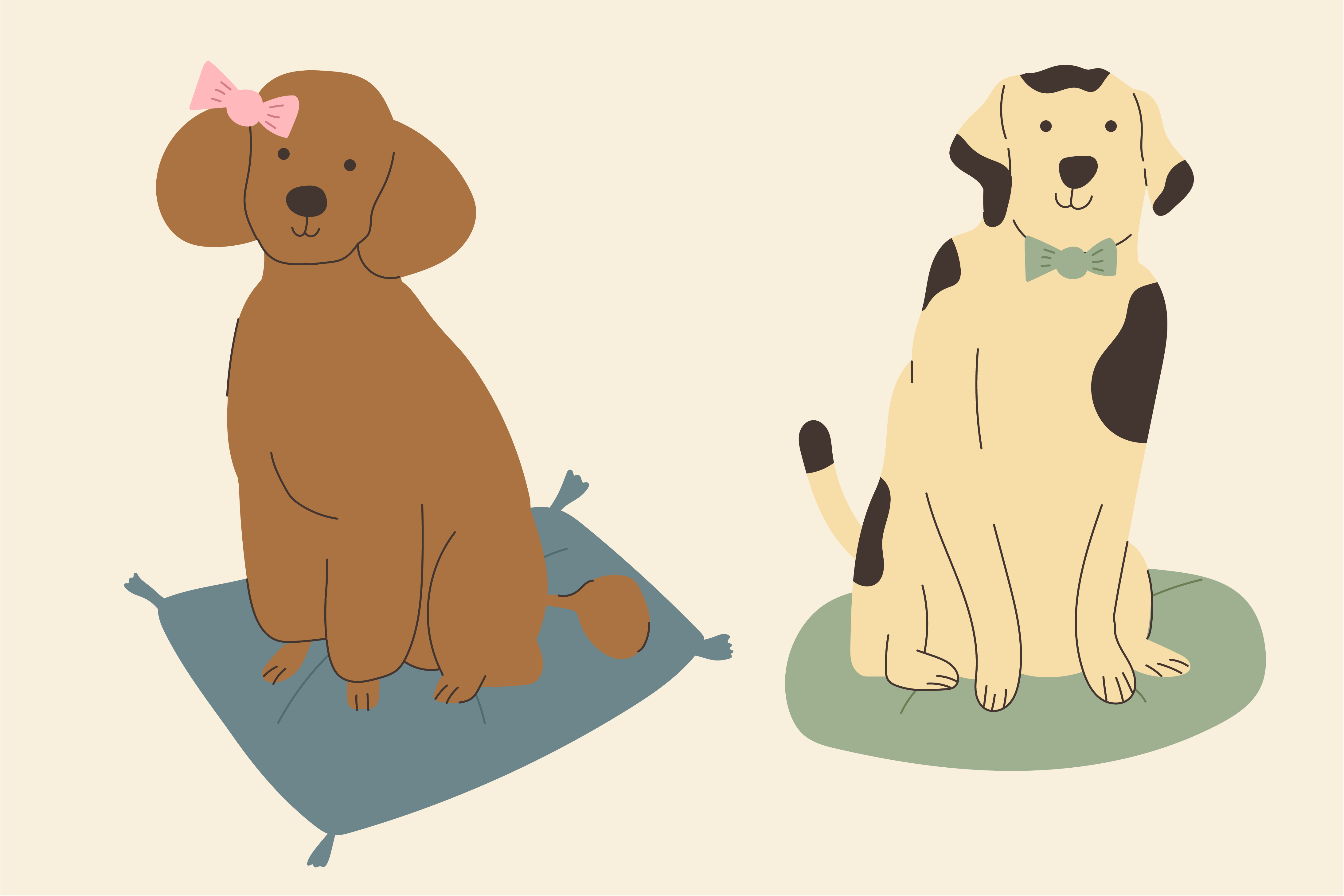 illustration of female and male dogs