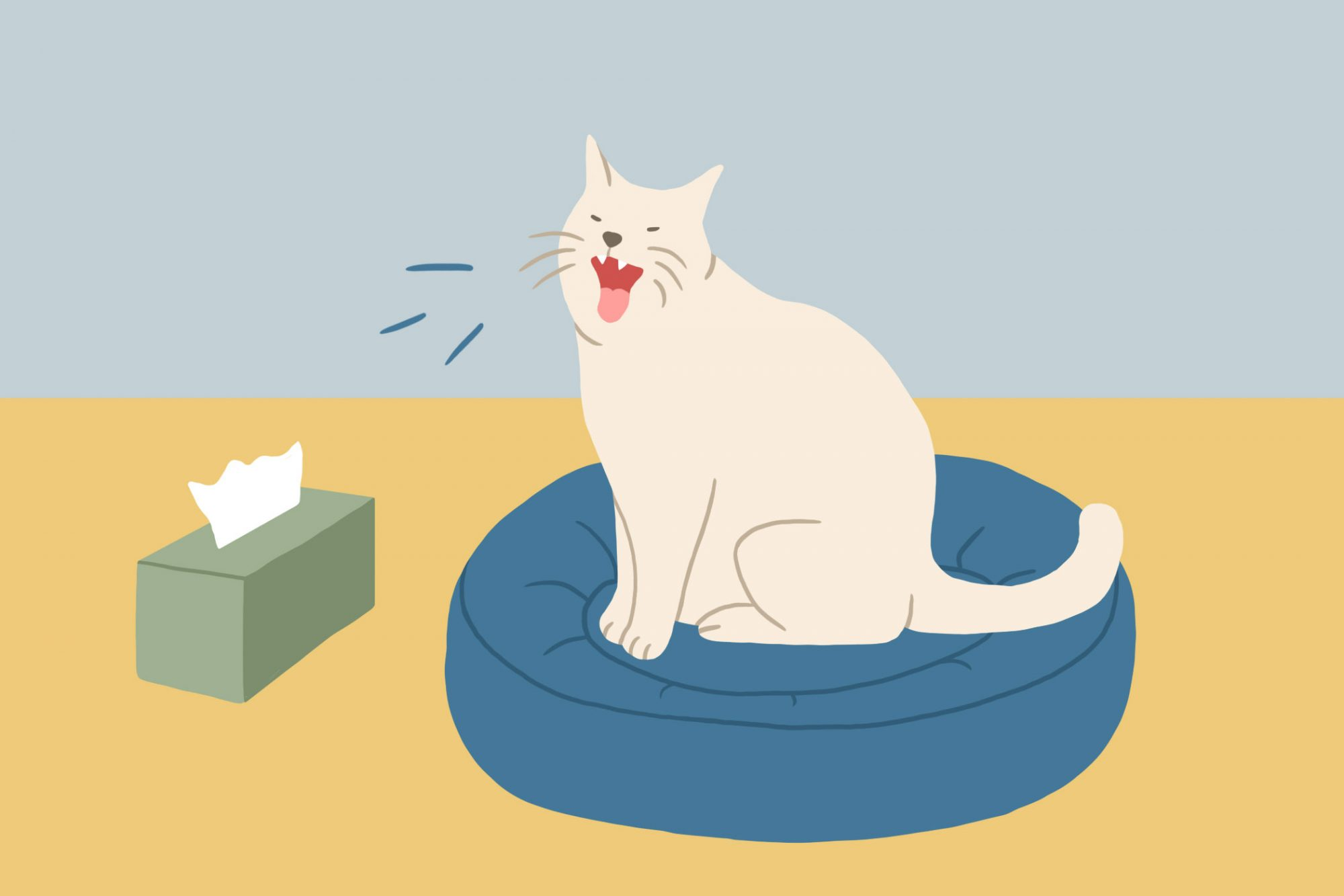 illustration of cat and a box of tissues
