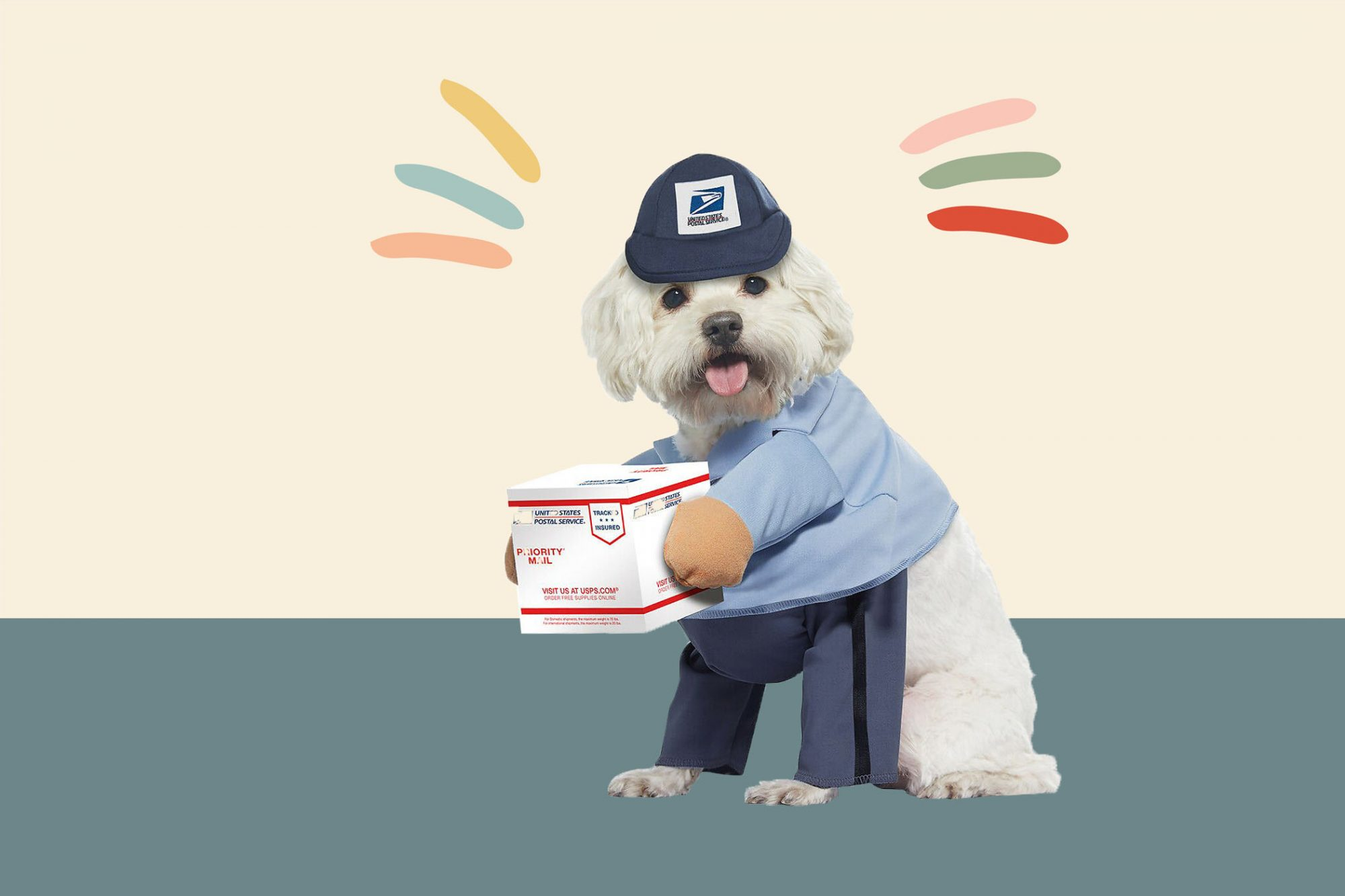 product photo illustrations with dog mailman costume