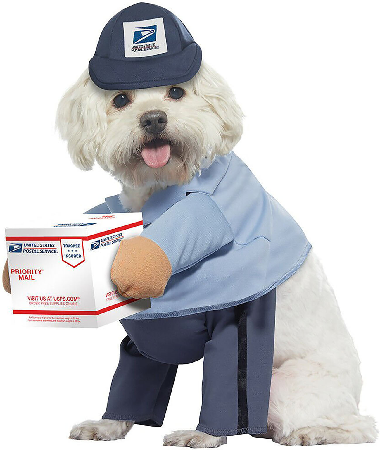 mailman dog costume
