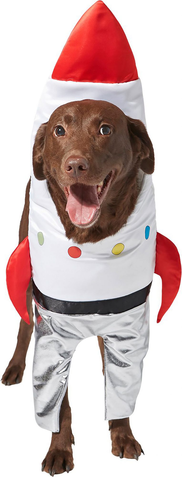 space ship dog costume