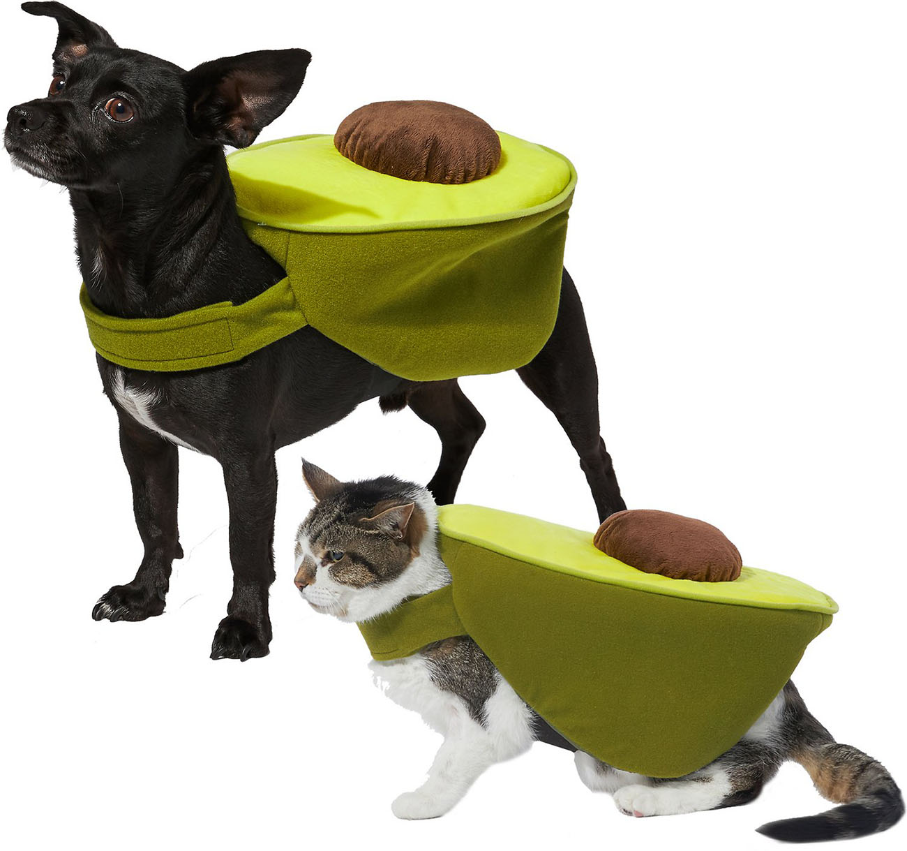 Avocado pet Halloween costume