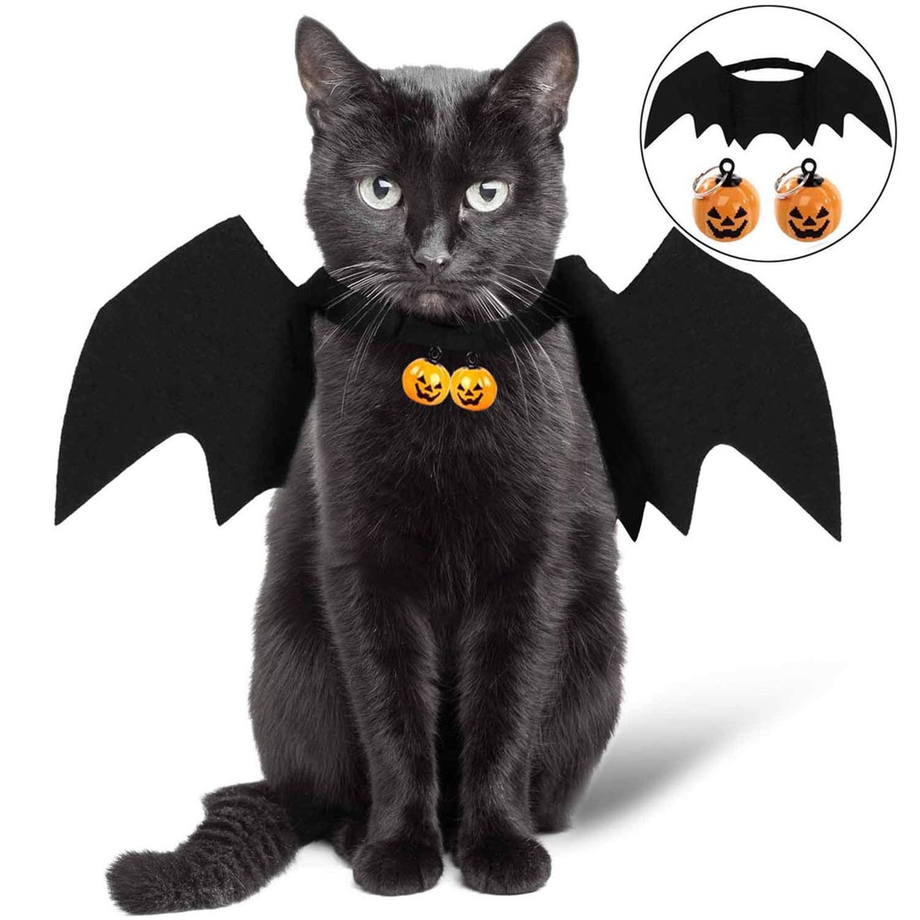 Bat wings Halloween costume for cats