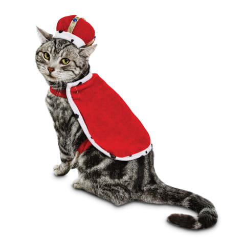 Cat king Halloween costume for pets