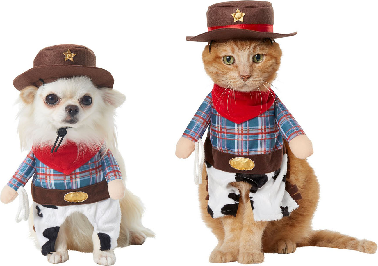 Cowboy Halloween costume for cats and dogs