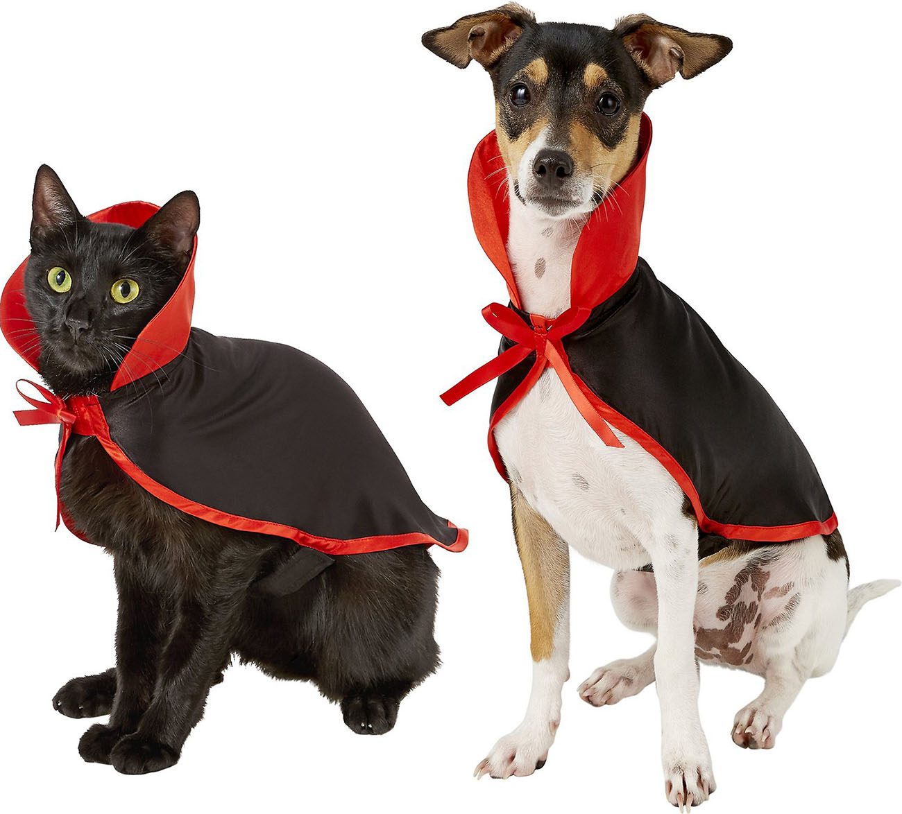 Vampire pet Halloween costume for cats and dogs