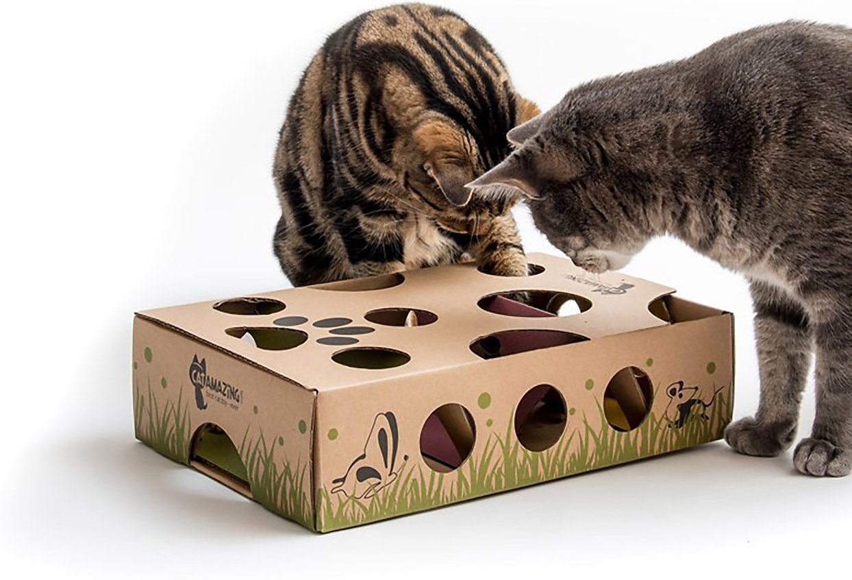 Cats play with Cat Amazing Interactive Treat Maze and Puzzle