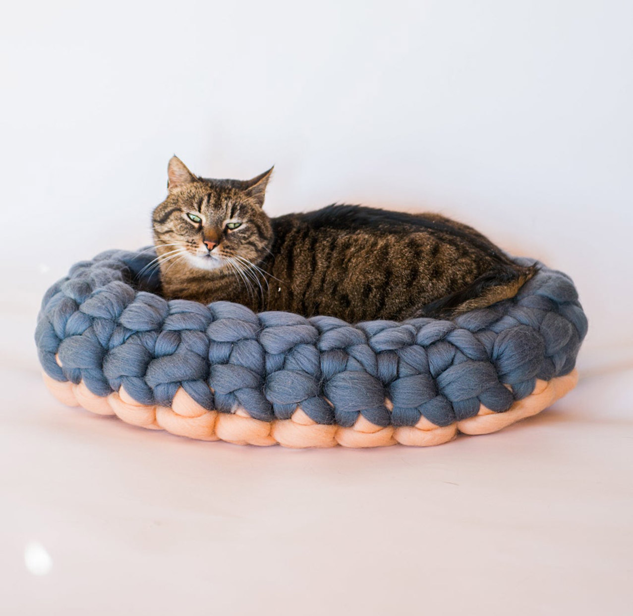 Cat lays in blue and pink chunky knitted cat bed