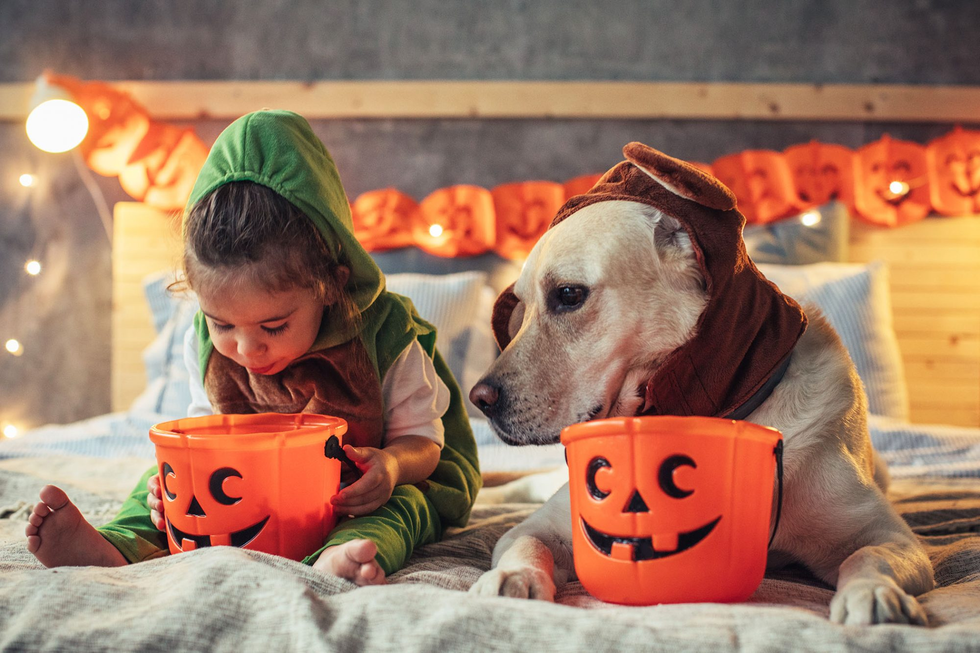 little girl with dog and halloween candy