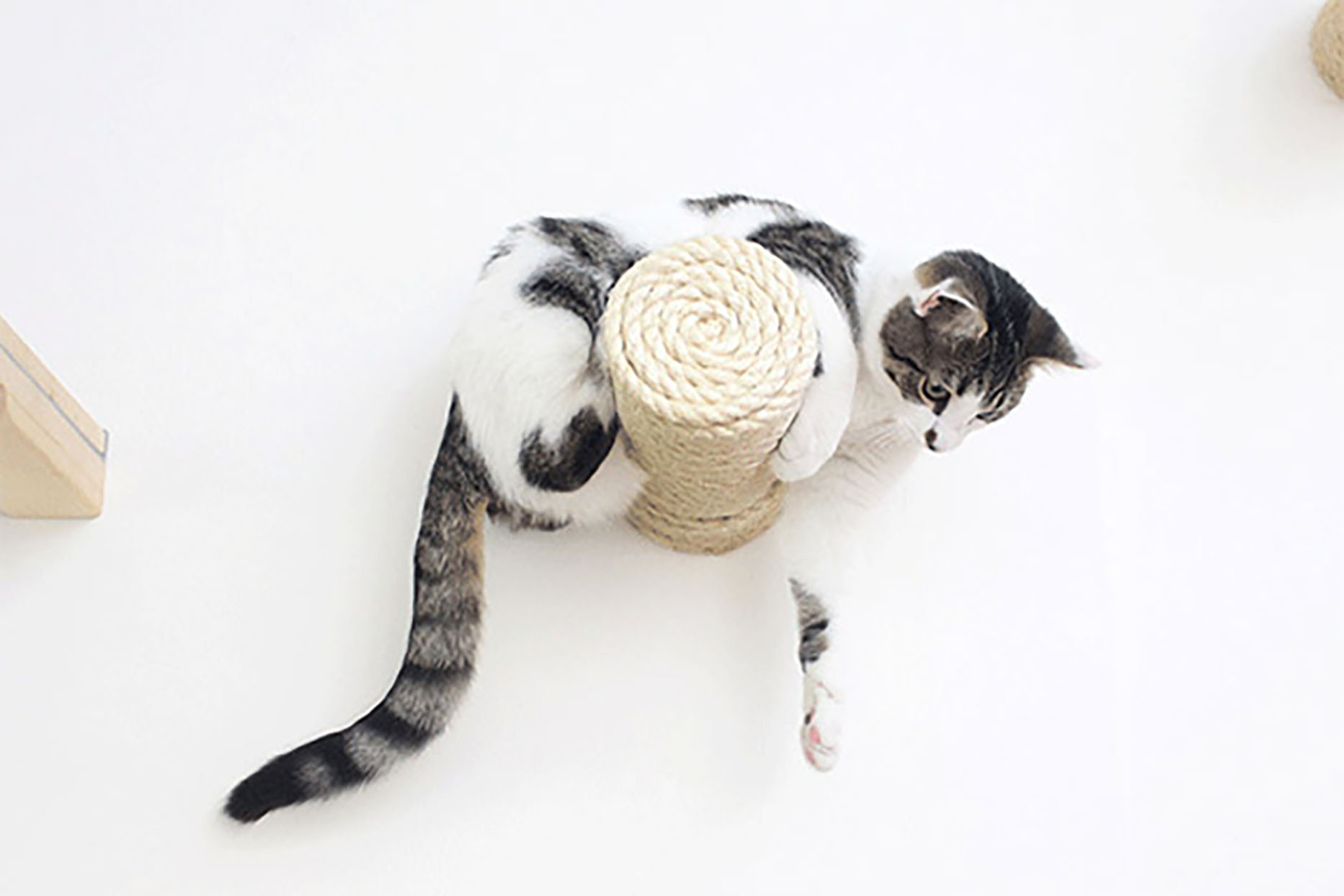 floating sisal rope cat post wall steps
